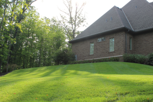 Irrigation keeps this lawn green and healthy all summer long.